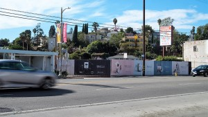 San-Francisco-Wild-Posting-Squarespace